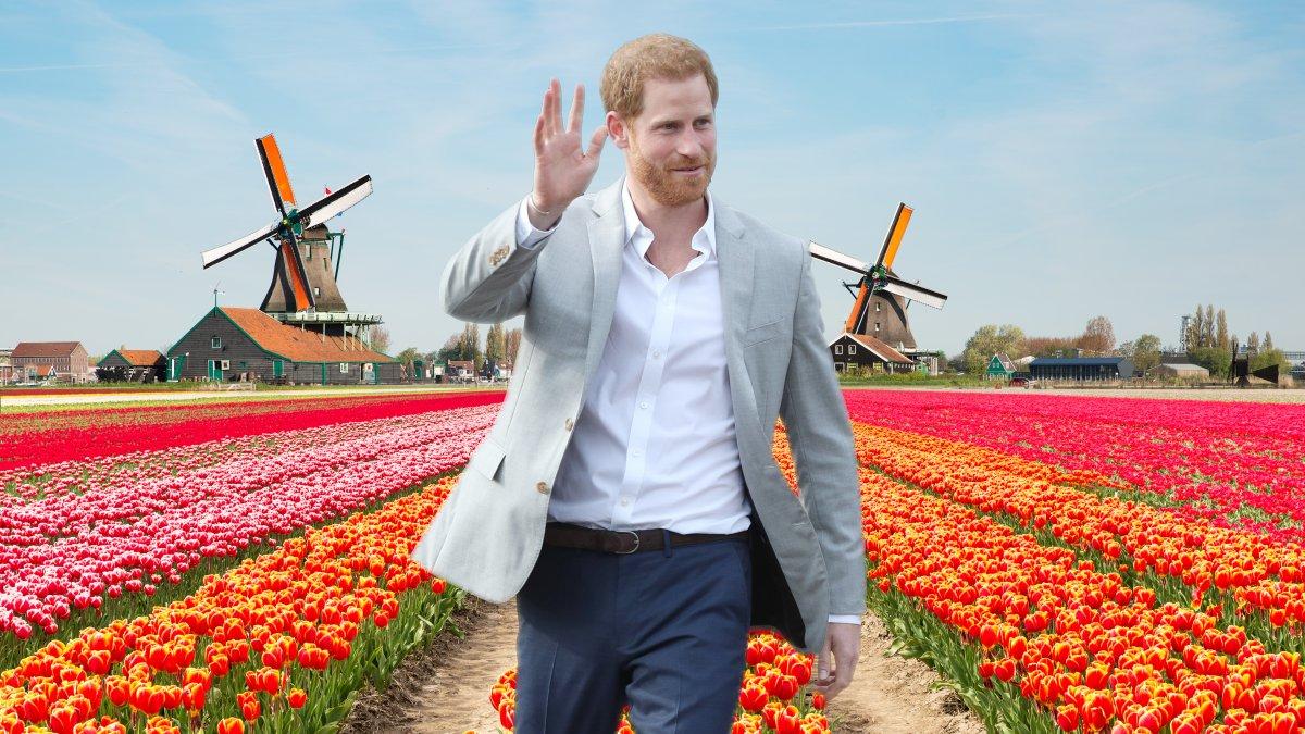 Prins Harry bezoekt Nederland