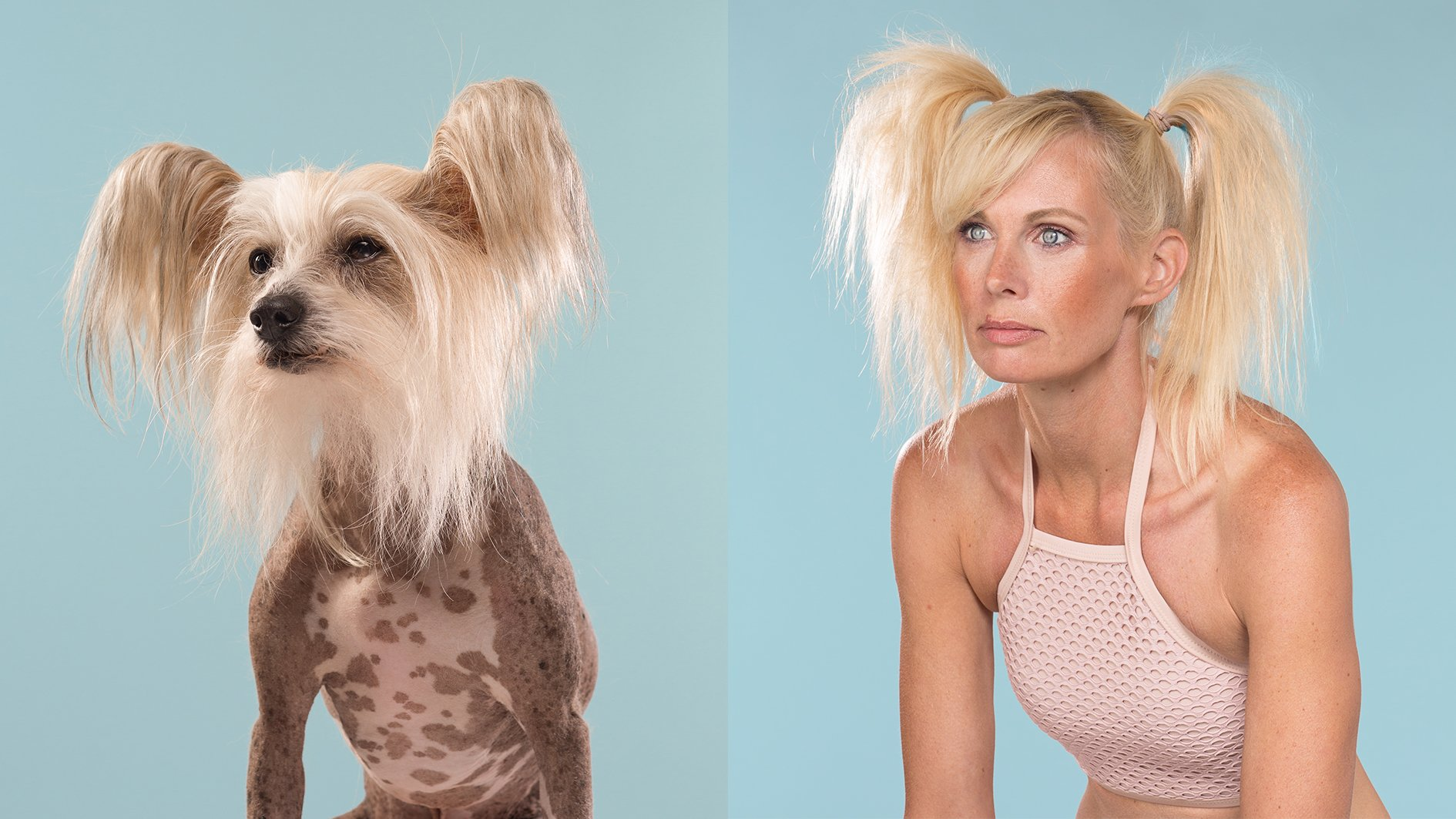 Geliefde Deze foto's bewijzen dat honden op hun baasje lijken (of andersom @KF83