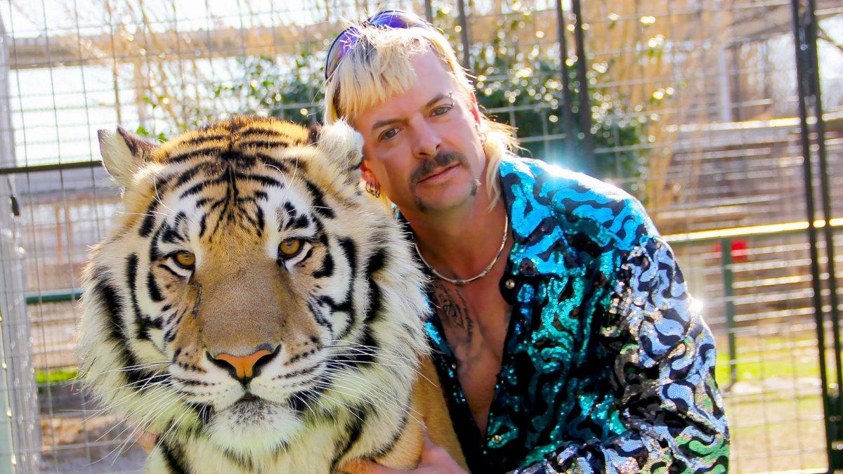 Tiger king vervolg